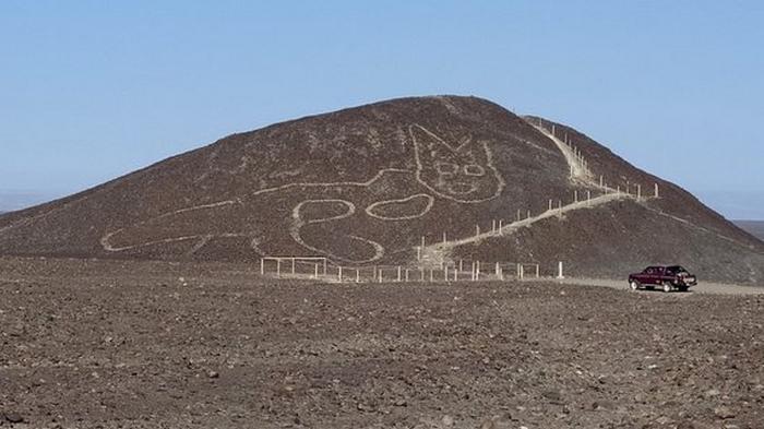 В пустыне Перу обнаружили гигантский рисунок кота, сделанный 2000 лет ...