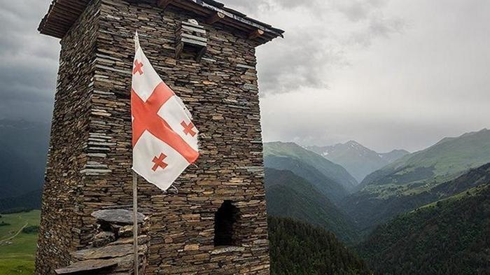 Грузия будет проситься в ЕС через четыре года