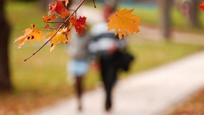 Синоптики озвучили прогноз погоды на ноябрь
