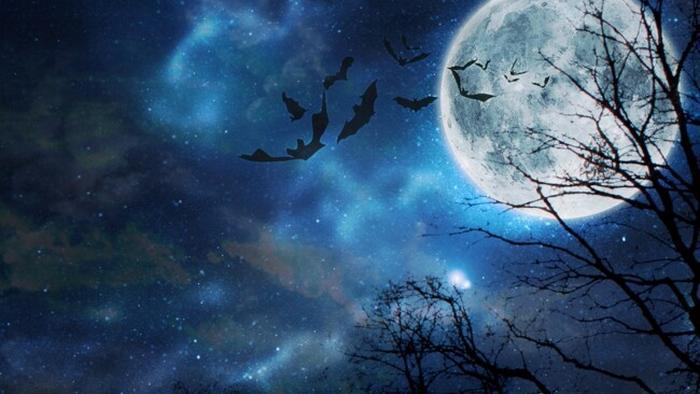 Голубая Луна: особенности полнолуния на Хэллоуин 31 октября