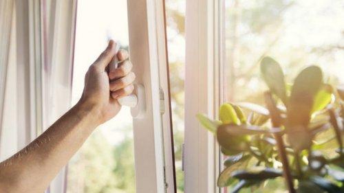 Почему металлопластиковые окна Рехау стали такими популярными?