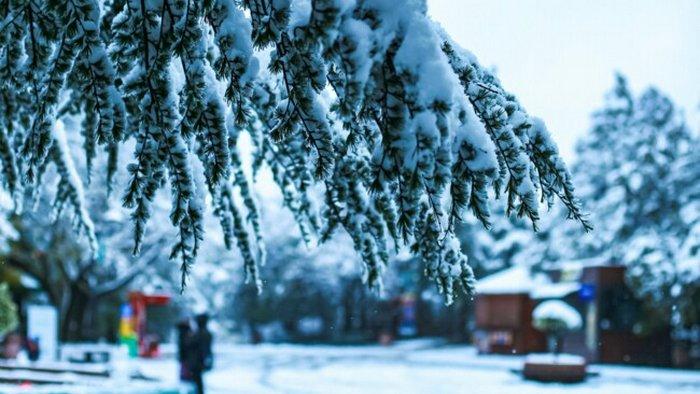 12 декабря: какой сегодня праздник, приметы дня и что нельзя делать