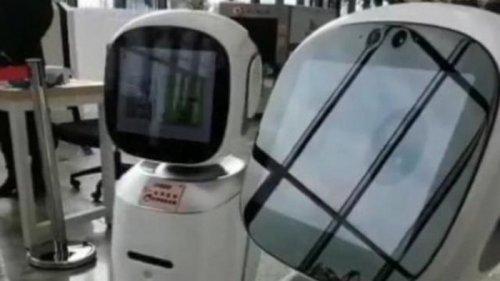 В Китае поссорились роботы-библиотекари (видео)