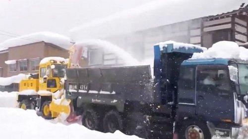 В Японии число жертв снегопадов выросло до восьми (видео)