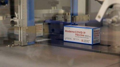 СМИ: Четыре страны ЕС уже получили вакцину Moderna