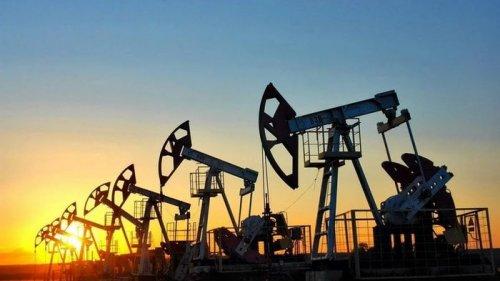 Нефть продолжает дешеветь: цена на Brent упала ниже $55
