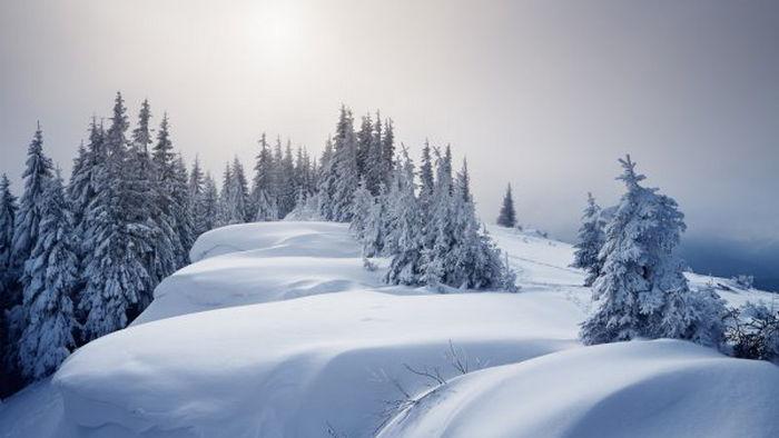 26 января: какой сегодня праздник, приметы дня и что нельзя делать