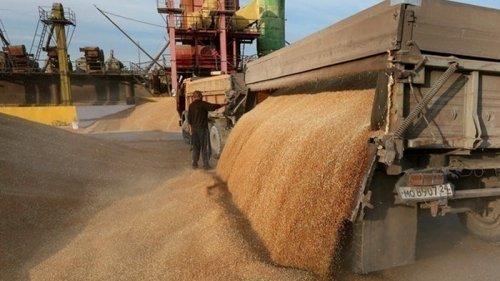 Украина на втором месте в мире по экспорту зерна