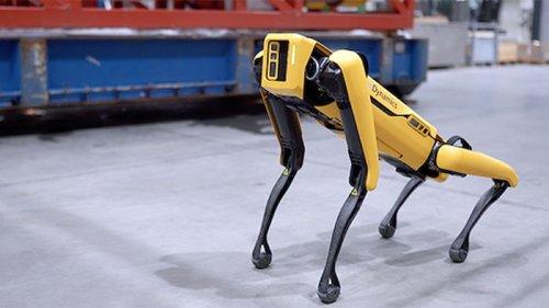 Теперь рисует и сажает цветы. Boston Dynamics улучшила свою робособаку...