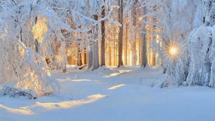 Погода в феврале: синоптик рассказал, когда Украину засыплет снегом