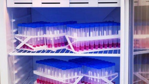 В Китае начали работу над вакциной, которую можно будет хранить в холодильнике