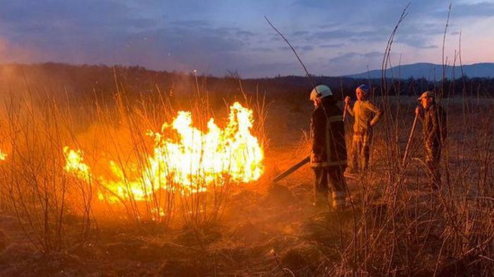 На Закарпатье горела Долина нарциссов – вместо будущей красоты там сейчас пепелище (фото)