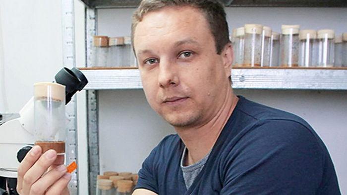 В Украине найдена молекула памяти