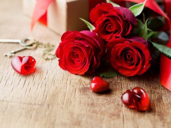 Что из цветов подарить девушке на