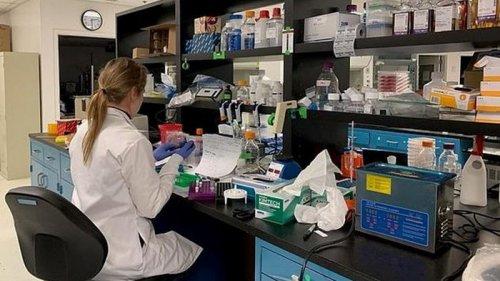 В США тестируют вакцину в виде капсул