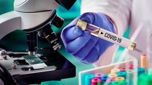 В мире число COVID-заражений растет седьмую неделю подряд - ВОЗ