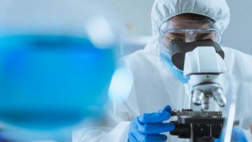 Идеальные творения? Американские ученые нашли уникальных микробов, которые не подвержены эволюции