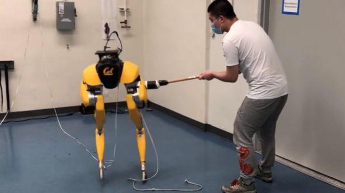 Забудьте о Boston Dynamics. Разработан робот, который сам учится ходить: видео