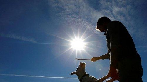 2020 год вошел в тройку самых жарких в истории