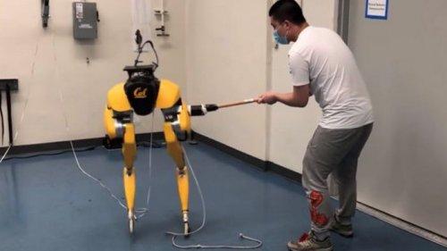 Забудьте о Boston Dynamics. Разработан робот, который сам учится ходит...