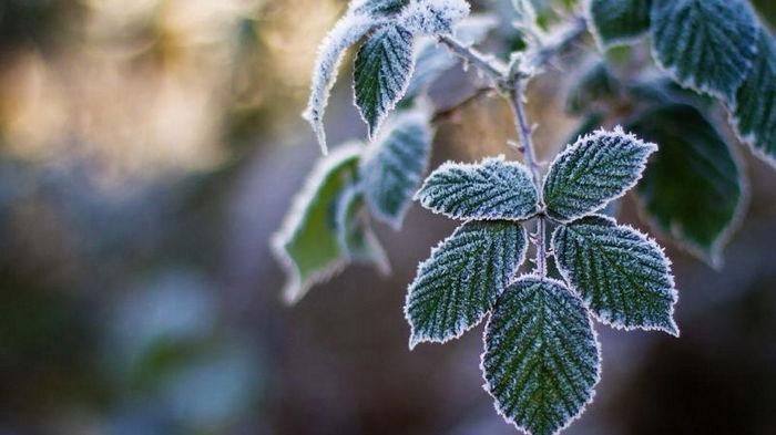 В Украину идут сильные заморозки