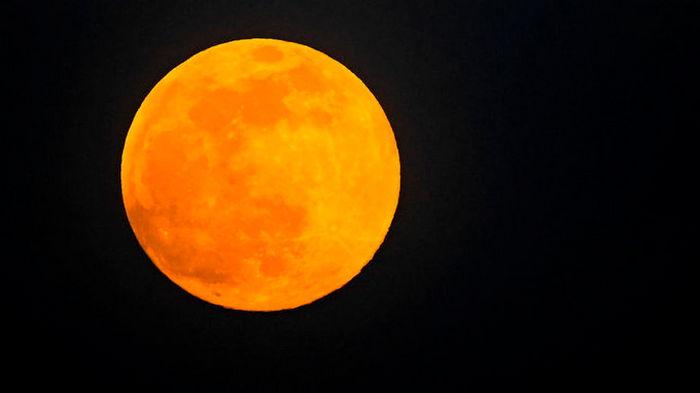 Прошлой ночью мир увидел Розовое Суперлуние (фото)