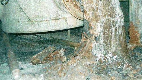 В завалах под разрушенным реактором ЧАЭС усиливаются ядерные реакции –...