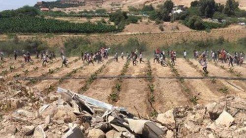 Тысячи иорданцев пытались прорваться в Палестину