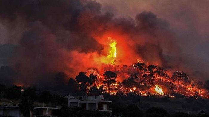 В Греции из-за лесных пожаров эвакуируют села и монастыри