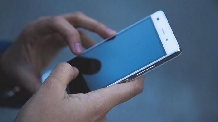 Всеукраинская школа онлайн теперь доступна в мобильном приложении