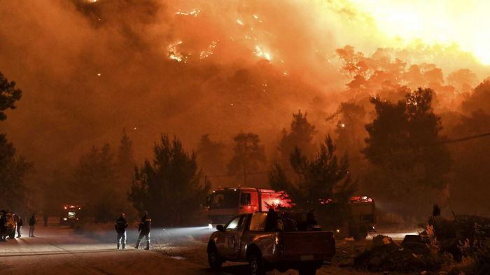 В Греции под Афинами горят леса, власти начали эвакуировать местных (видео)
