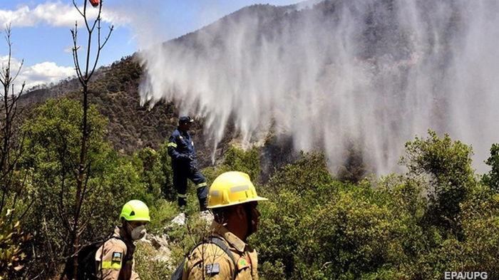 В Греции в пожарах выгорели уже 55 гектаров леса
