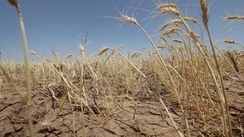 Украина переходит в зону сверхвысоких температур и погодных катаклизмо...