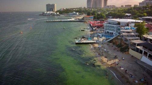 В Одессе из-за бактерий позеленело море (видео)