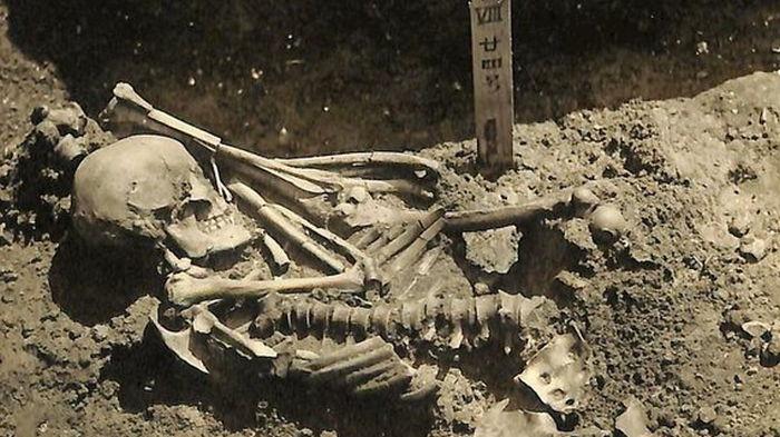 В Японии нашли древнейшую жертву нападения акулы (фото)