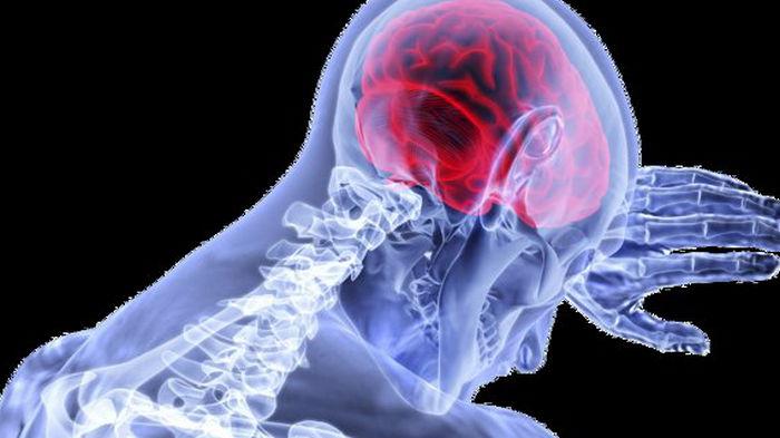 Ученые создали мозговой имплант, который обнаруживает и устраняет боль в реальном времени