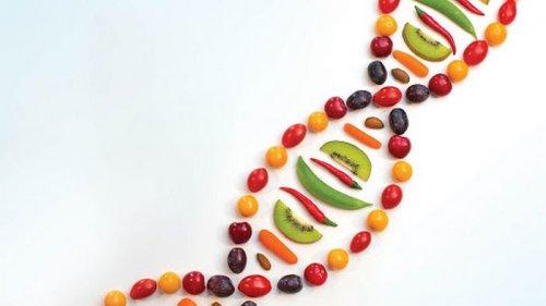 Биологи обнаружили вариант гена, который защищает от ожирения