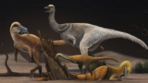 Британские ученые нашли род динозавров, который резко уменьшился в раз...