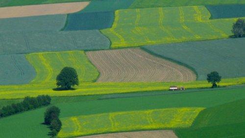Изменение климата. Зоной рискованного земледелия могут стать 2/3 территории Украины