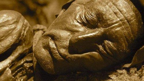 Причину смерти мужчины железного века уточнили по содержимому его желу...