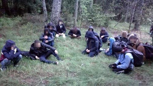 Литва задержала рекордное количество нелегалов на границе с Беларусью