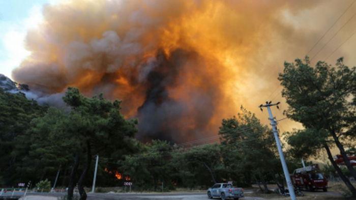 Пожары в Греции: 16 человек пострадали, десятки домов сгорели