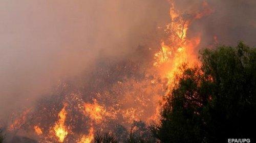Пожары в Европе влияют на погоду в Украине - Гидрометцентр