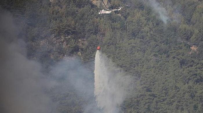 В Анталии погашены большинство лесных пожаров