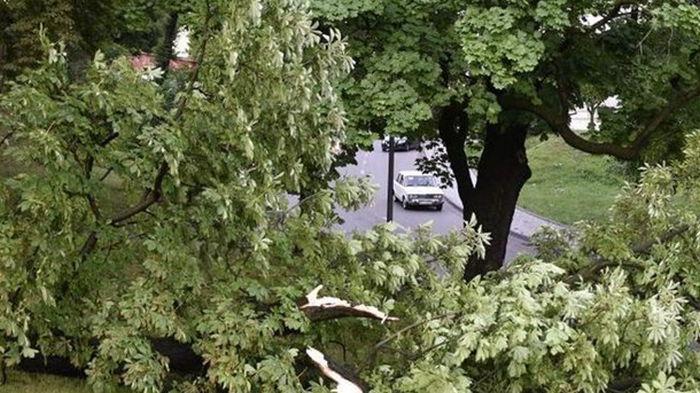Львов накрыл ураган с грозой (видео)
