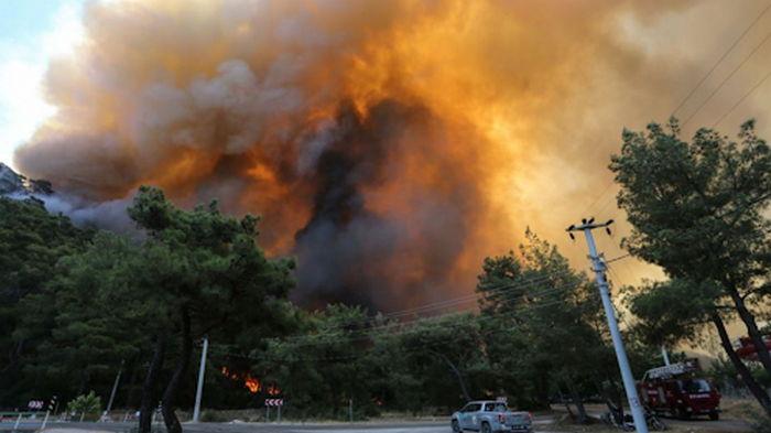 Турцию и Грецию охватили новые лесные пожары, спасатели пытаются потушить огонь