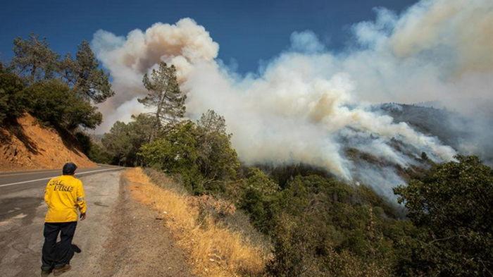 Лесные пожары приближаются к Лос-Анджелесу (видео)