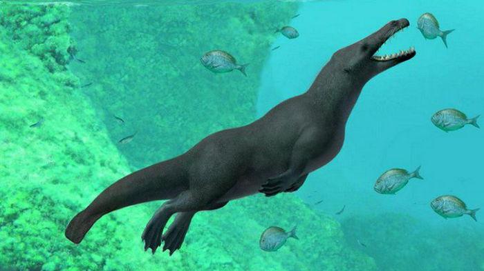 В Египте нашли кости четвероногого предка китов