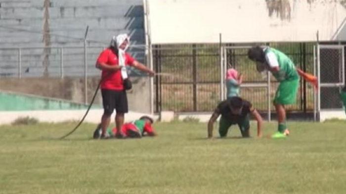 В Боливии во время футбольного матча на игроков напали пчелы (видео)