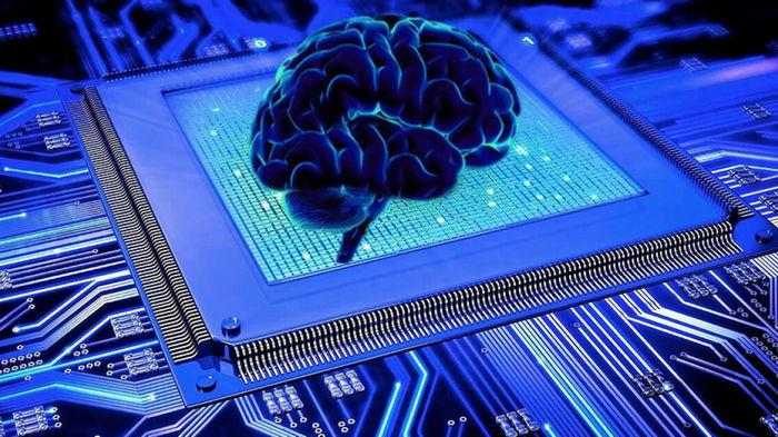 Эффективный, как мозг человека: ученые создали молекулярный компьютер нового типа